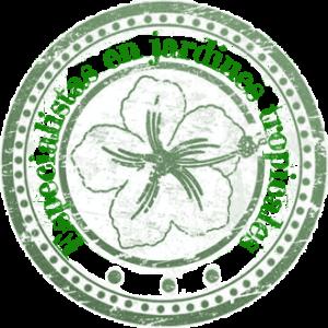 especialistas en jardines tropicales